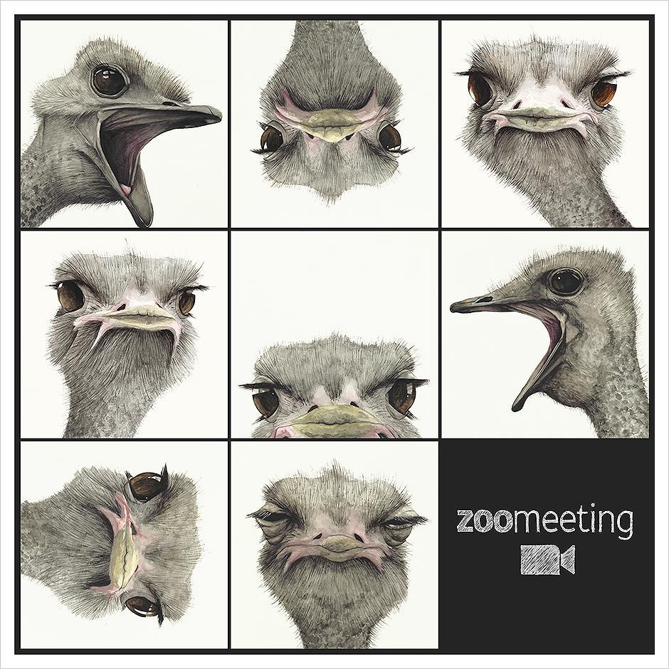 ZOOmeeting