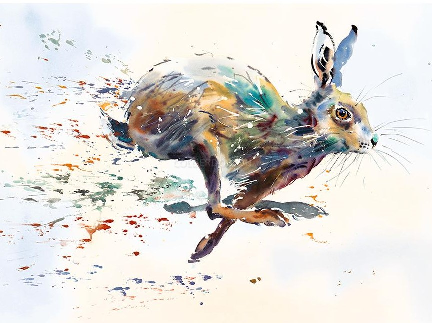 Hare Spray