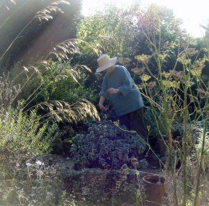 Artist Anna Pugh in her garden